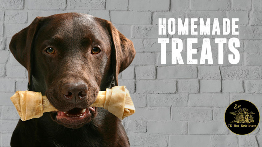 Recipes for Homemade Dog Treats