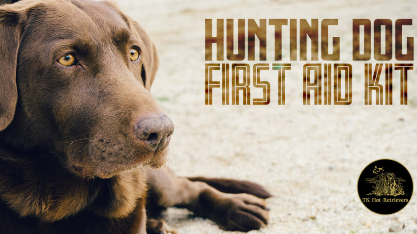 Hunting Dog First Aid Kit