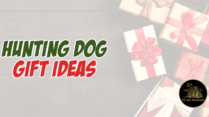 Hunting Dog Gift Ideas